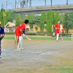 cricket-2015-05