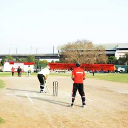 cricket-06